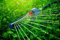 Спринклер лужайки spaying вода над зеленой травой Стоковая Фотография