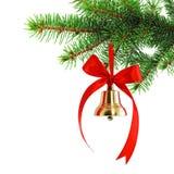 спрус ветви колокола золотистый Стоковая Фотография