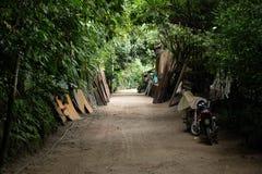 Спрятанная дорога джунглей в Колумбии стоковое фото rf