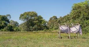 Спрятанная хата для наблюдать птицы в pantanal, Бразилии Стоковое Фото