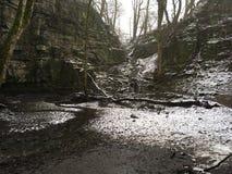 Спрятанное swallet водопада стоковые фото