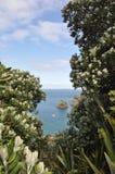 Спрятанный взгляд океана Стоковая Фотография RF