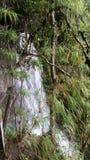 Спрятанный водопад стоковые изображения rf