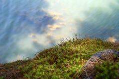 Спрятанный в глубинах Стоковые Фото