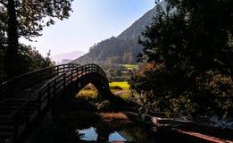 Спрятанный мост в древесинах Кантабрии Испании стоковые изображения