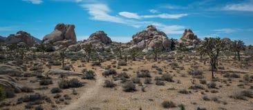 Спрятанный национальный парк дерева Иешуа долины Стоковое Фото