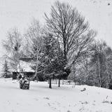Спрятанный дом Стоковое Фото