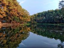Спрятанный рай стоковое фото rf