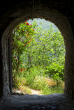 спрятанный сад Стоковое Фото