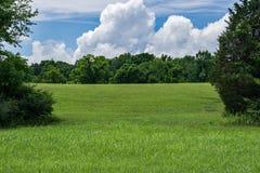 Спрятанный луг с облаками шторма Стоковые Фото