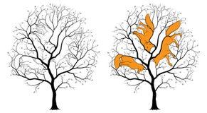 3 спрятанных контура среди ветвей дерева, черный силуэт лисы на белой предпосылке Стоковая Фотография