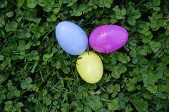 3 спрятанных пластичных яичка Стоковое Фото