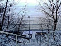 Спуск к воде в покрытом снег парке wintertime стоковые изображения rf