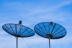 Спутниковый диск на верхней части корня Стоковое Фото