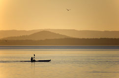 Сплавляться на LakeTuggerah на заходе солнца Стоковое Изображение RF