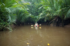 Сплавляющся на каяке на Nae спетом Klong, Thailand& x27; s меньшая Амазонка Стоковые Изображения
