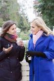 Сплетня и кофе подруг Стоковое Изображение