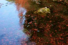 Сработанность воды и камней Стоковое Фото