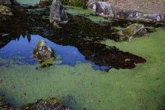 Сработанность воды и камней Стоковые Фотографии RF