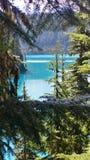 Сравнивая цвета на озере garibaldi Стоковая Фотография RF