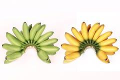 Сравните с зеленым яичк-бананом, желтым яичк-бананом на белой предпосылке Стоковые Изображения RF