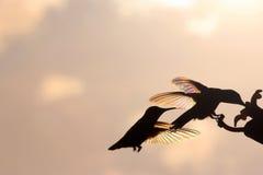 Сражать Хаммеров радуги Стоковое Фото
