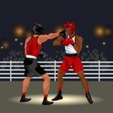 Сражение бойцов в кольце Стоковое Фото