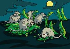 Сражение ночи мышей с стручками гороха в саде Стоковое фото RF