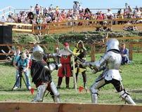 Сражение рыцарей Стоковое Изображение