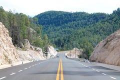 Сразу дорога к мосту стоковые фотографии rf