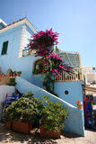 Средиземное море острова ischia Стоковые Фотографии RF