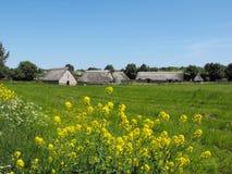 Средневековая деревня на озерах Cosmeston Стоковые Изображения