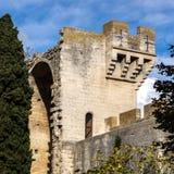 Средневековая крепость ферзя в Tarascon, франция. стоковое изображение rf