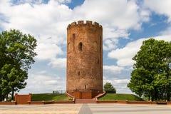 Средневековый городок Kamenetz башни, Беларусь стоковые изображения rf