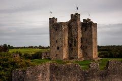 Средневековый замок отделки, Ирландия Стоковая Фотография RF