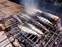 Среднеземноморские зажаренные сардины на гриле стоковое изображение
