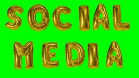 Средства массовой информации слова социальные от писем воздушного шара гелия золотых плавая на зеленый экран - видеоматериал