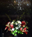 Срезанные цветки за окном Стоковое Изображение RF