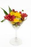 Срезанный цветок смешивания в стекле Стоковая Фотография RF