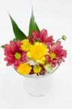Срезанный цветок смешивания в стекле Стоковые Изображения