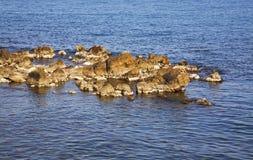 Средиземное море в Антибе Франция Стоковое фото RF