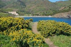Средиземное море Франция пляжа прибрежной тропы стоковые изображения rf