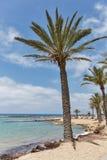 Средиземное море Palm Beach Стоковые Фотографии RF
