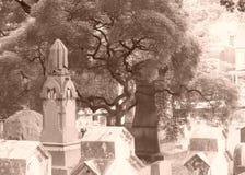 Среди умерших Стоковая Фотография RF