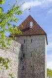 Средневековая башня в весеннем времени Стоковые Изображения RF