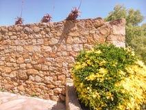 средневековая стена Стоковая Фотография RF