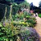 Средневековое дворца Eltham садов историческое Стоковые Изображения RF