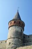 Средневековые крепостная стена и башня Стоковые Изображения RF