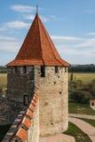 Средневековые руины замка в гибочном устройстве, Приднестровье Стоковая Фотография