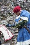 средневековый воин Стоковые Фото